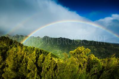 Hawaii Loa Ridge Rainbows
