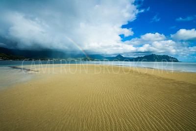 Sandbar Low Tide