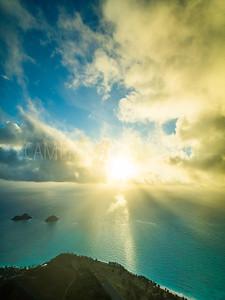 Bellows Sunbeams