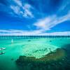 Sandbar Reef Patch