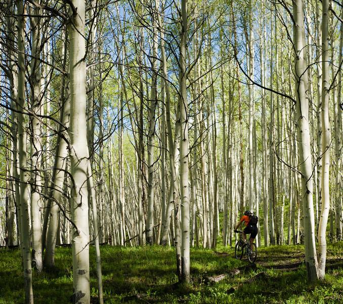 Aspen ride.