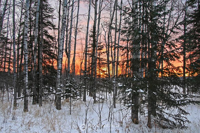 North woods sunrise