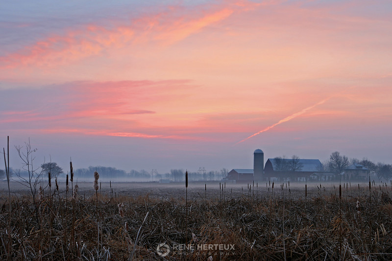 Foggy farm sunrise, Green Bay WI