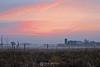 Foggy farm sunrise, Green Bay WI
