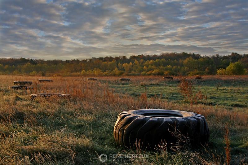Sunrise tires