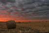 Corn bales sunset