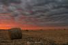 Corn bales sunset