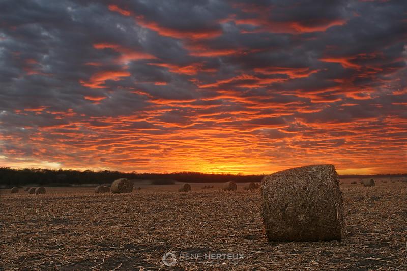 Corn bales sunset, Shakopee MN