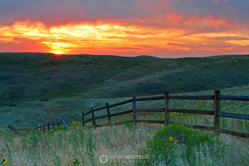 Boise sunset, Boise ID