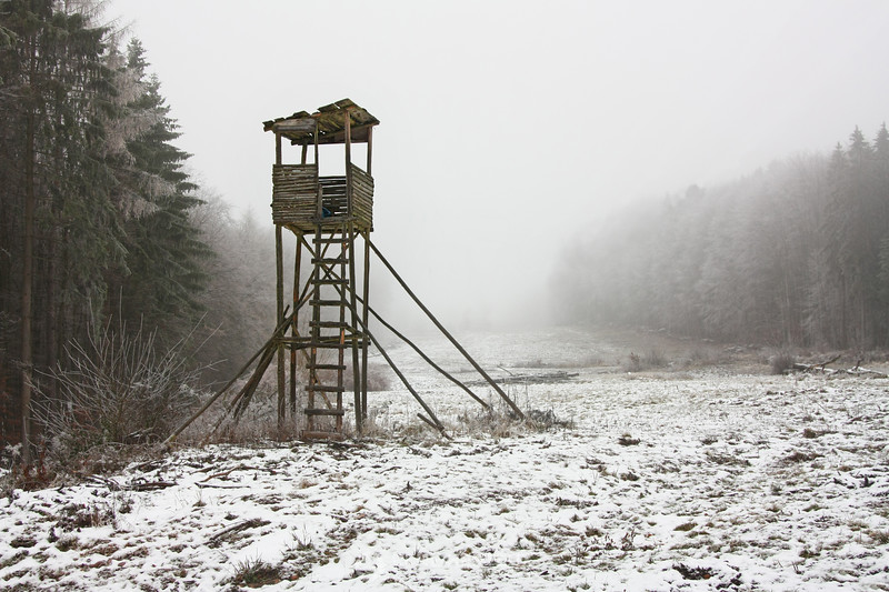 Hunting stand in fog and frost