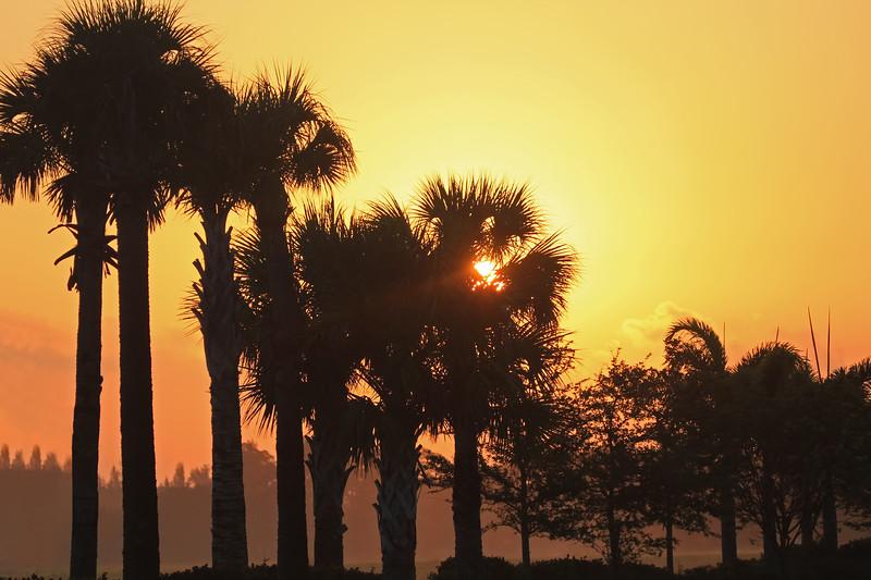 Cape Coral sunrise