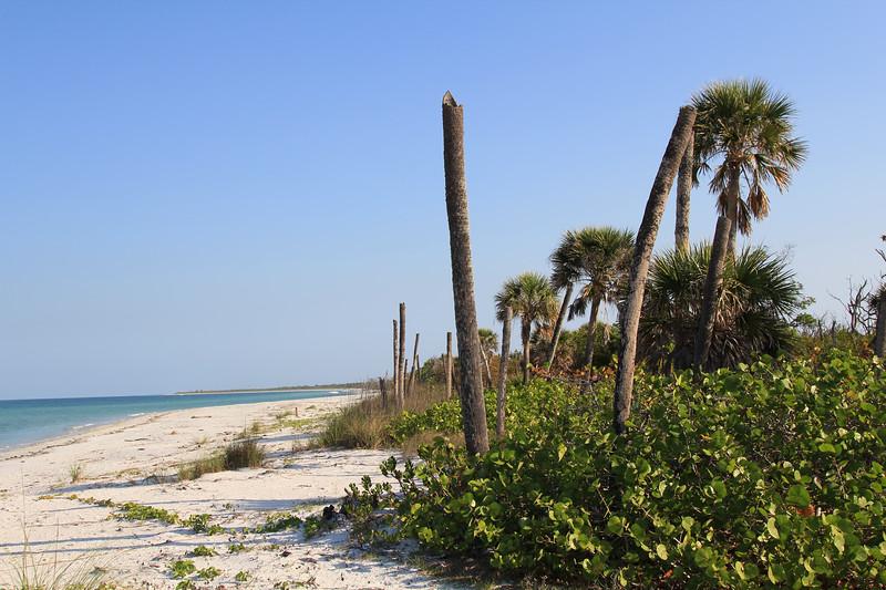 Deserted Cayo Costa beach