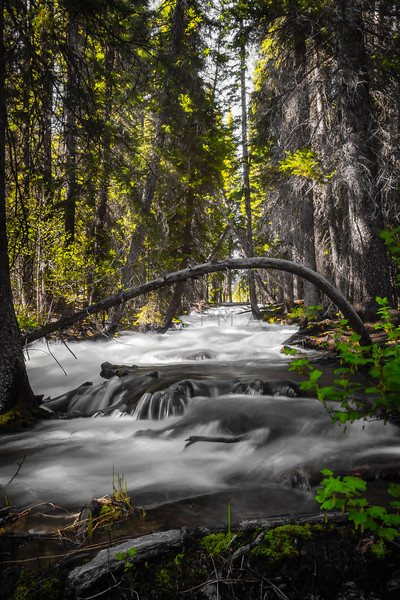 Redfish Lake Creek - Spring Run-Off in the Sawtooth Mountains, Idaho