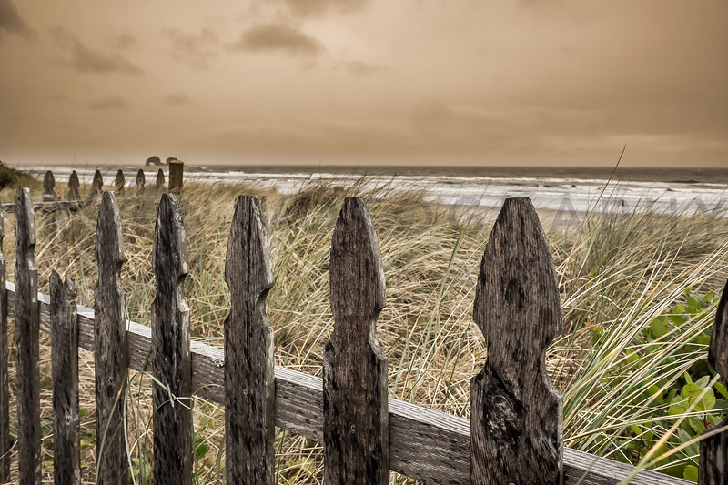 Wooden Fence, Oregon Coast