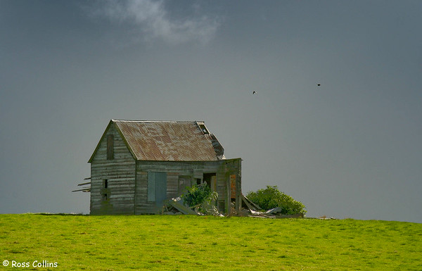 Abandoned farm cottage, State Highway 1 near Hunterville