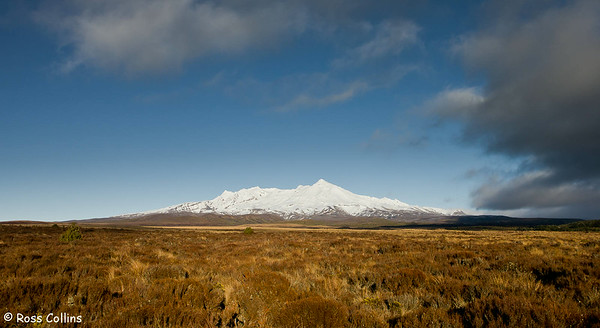 Mt Ruapehu from the Desert Road