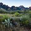 Chisos Mountains at Sunrise:  Big Bend National Park, Texas
