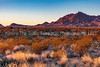 80.  Sunrise Over Desert And Mountains