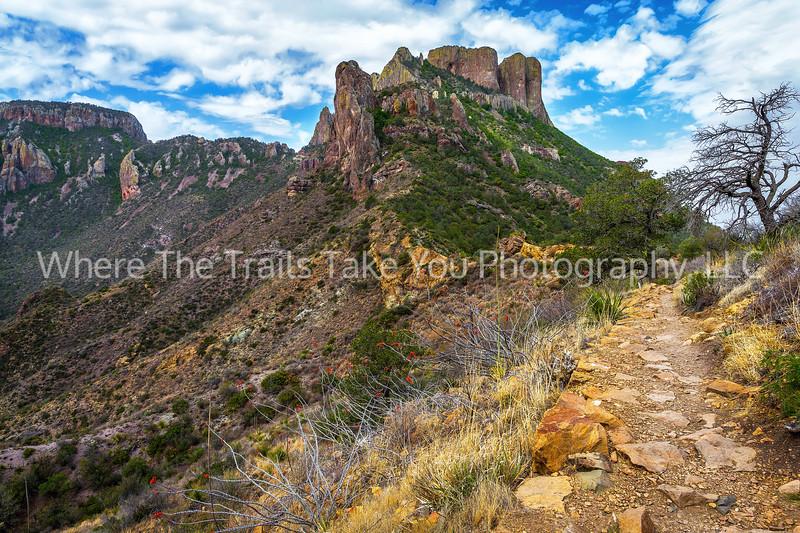 53.  Lost Mine Trail View of Casa Grande