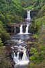 Umauma Falls, Umauma River, North Hilo, Hawaii