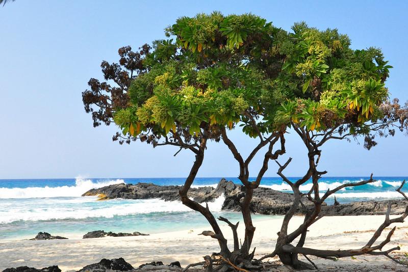 Makalawena Beach, Kona Coast State Park<br /> a.k.a. Kekaha Kai, North Kona, Big Island, Hawaii