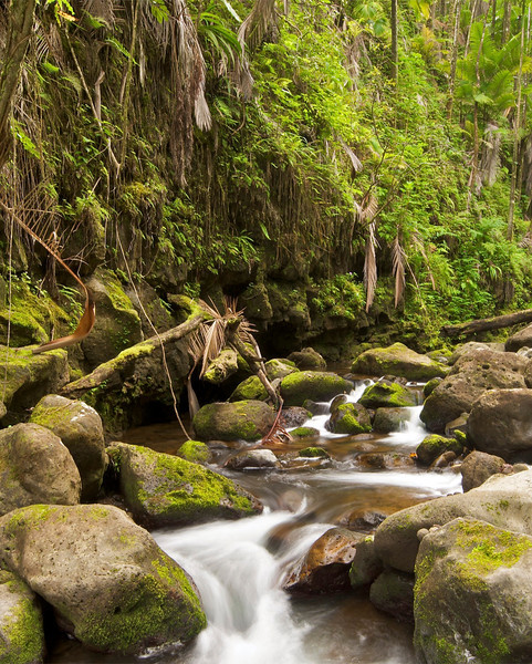 Nunue stream, North Hilo, Hawaii
