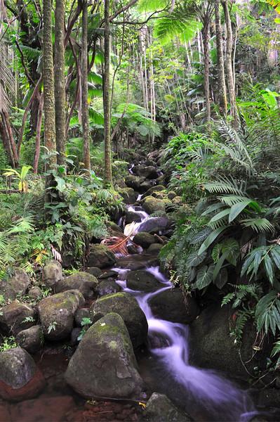 Boulder Creek Waterfall, Alakahi Stream, South Hilo, Big Island, Hawaii
