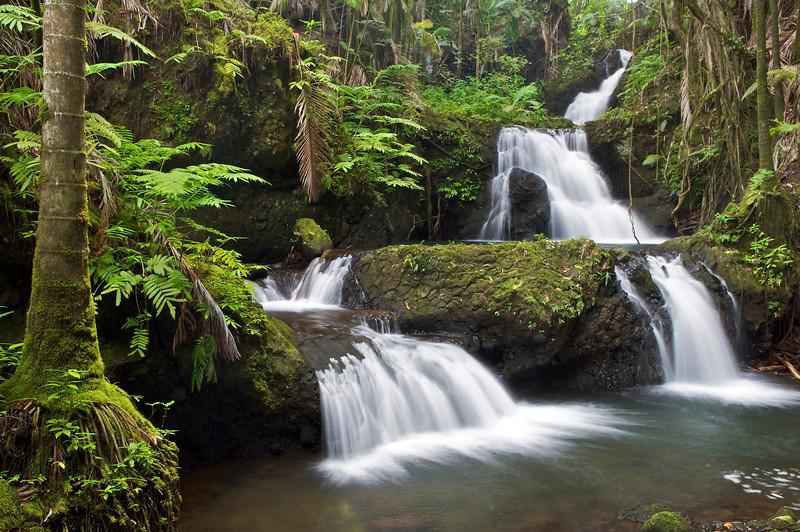 Onomea Falls, South Hilo, Hawaii