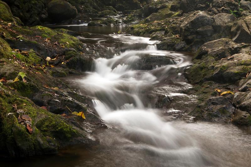 Waikaumalo stream, Waikaumalo county park, North Hilo, Hawaii