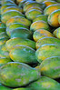 Papaya, Farmers Market, Kailua-Kona, Big Island, Hawaii