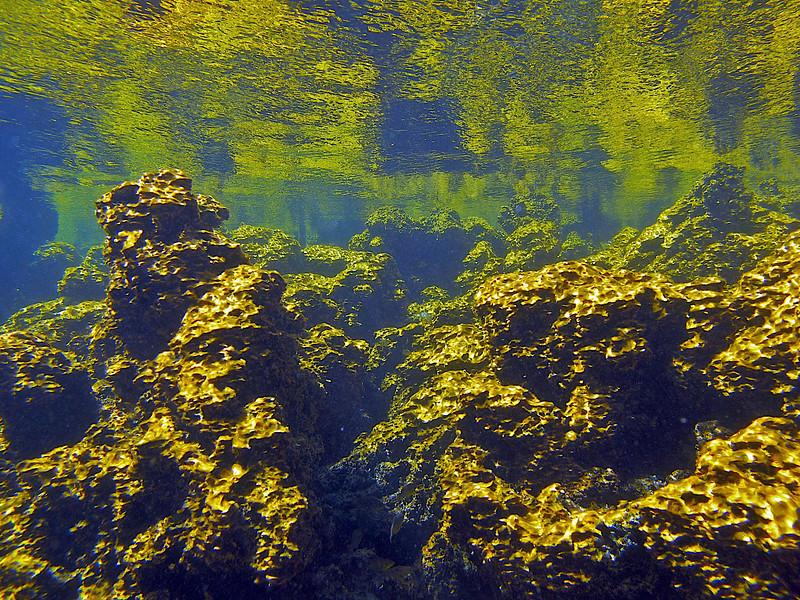 Golden Pond, Ke-Awa-Iki, North Kona, Big Island, Hawaii