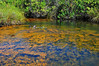 Golden Pond, Ke-Awa-Iki, North Kona, Big Island, Hawaii