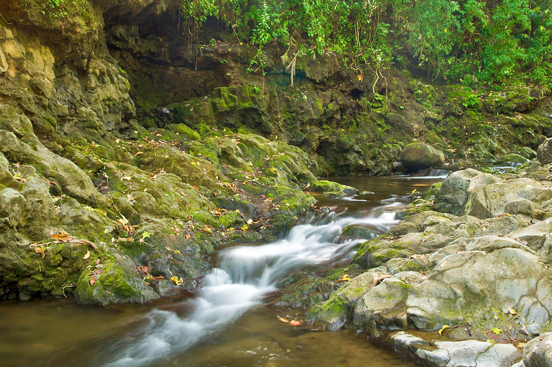 Waikaumalo stream, Waikaumalo county park, North Hilo, Hawaii