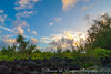 Hilo Trip Onomea Arch, Laupahoehoe Point, Akaka Falls, Liliuoukalani, Volcano 4.9.13