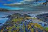 Hilo Bay Front; Keaukaha 11.9.14; Wailoa