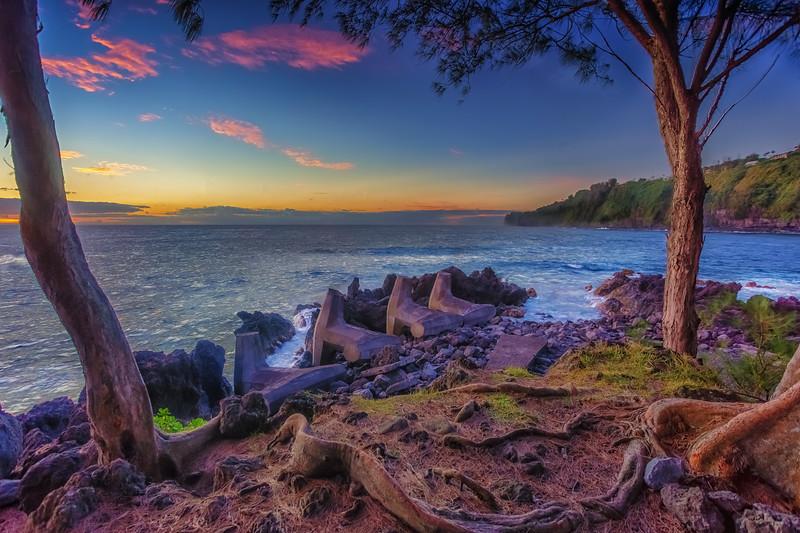 Hilo 7.6.14 Laupahoehoe Point