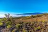 Mauna Kea / Volcano 4.12.14