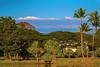 Snow Capped Mauna Kea from Wailoa State Park 2.2.14