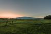 2.1.14; 2.2.14; Hilo Trip Mauna Kea Snow 1.31.14