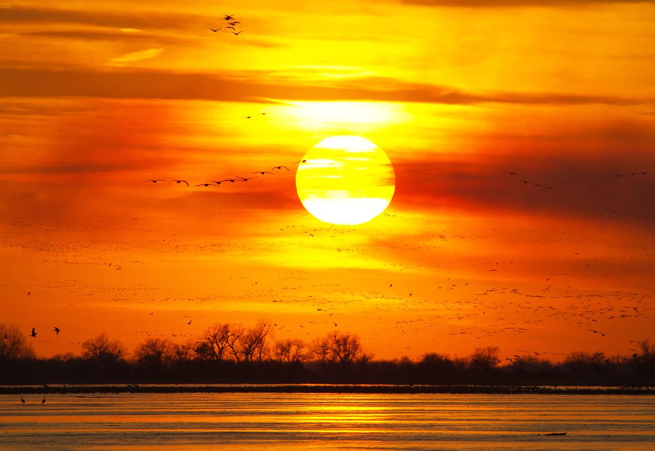 Big Nebraska Skies - 7