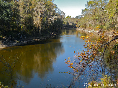 More views of the Withlacoochee.  Very pretty. Get notifications via: