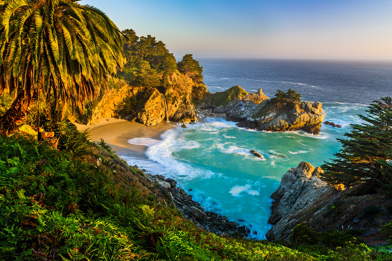 """McWay Falls at Sunset with Palm Tree"" D818858 Big Sur, Northern California"