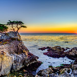 Lone-Cypress-At-Sunset_Carmel-California-17-Mile-Drive-D3S3557