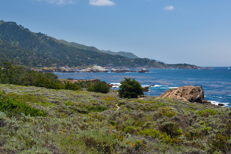 Point-Lobos-Carmel-Coastline-Northern-California-Coastline-1809