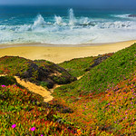 """Waves Crashing Along the Northern California Coast"""
