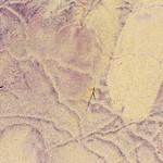 Purple-Sand-Pfeiffer-Beach-Big-Sur-Julia-Pfeiffer-Burns-State-Park-Northern-California-Healthcare-Fine-Art_D818999