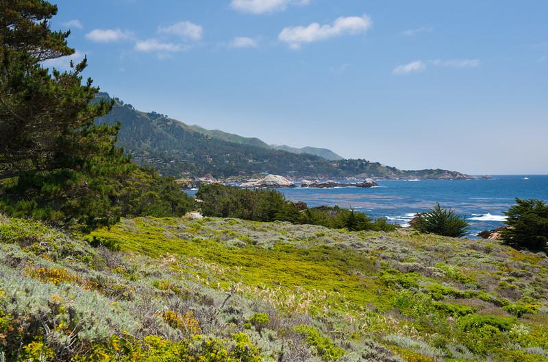 """Point Lobos Northern California Coastline""  near Carmel and Monterey California"