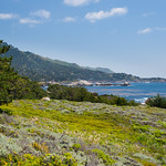 """Point Lobos Northern California Coastline""  near Carmel and Monterey California"