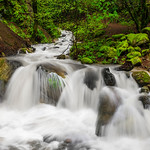 """Spring Waterfalls in the San Francisco Bay Area"" Uvas Canyon Creek County Park in Spring, San Francisco Bay Area.  D813082"