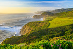 """Along the Northern California Coastline and Bixby Bridge"""